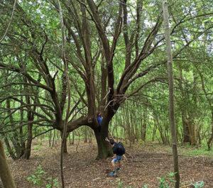 Sport, Natur und Ferien in Ligurien